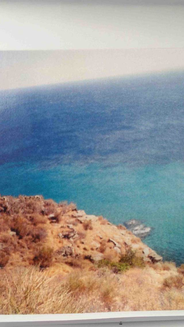 (For Sale) Land Agricultural Land  || Cyclades/Andros Chora - 3.600Sq.m, 39.000€