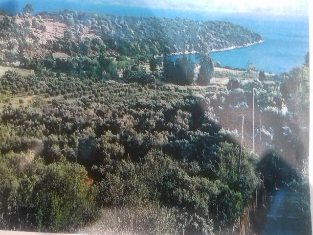(For Sale) Land Large Land  || Aitoloakarnania/Anaktorio - 158.000Sq.m, 2.500.000€